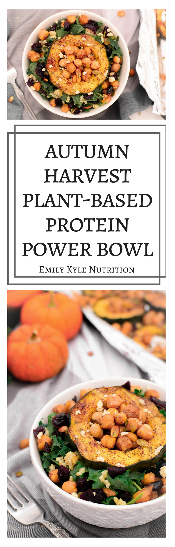 Savor all of your favorite fall flavors with this nutrient dense Autumn Harvest Plant-Based Protein Power Bowl by Emily Kyle Nutrition
