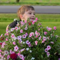 Spring Time Inside The Millennial Garden