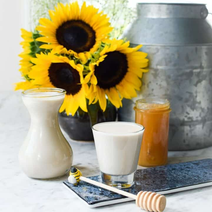 Homemade Sunflower Seed Milk from Emily Kyle Nutrition