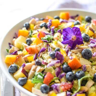 Rainbow Chicken Salad (Paleo, Gluten-Free, AIP)