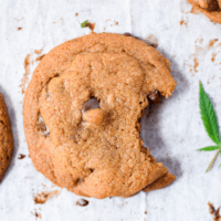 Simple, Delicious Cannabis Chocolate Chip Cookies