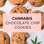 The Best Cannabis Chocolate Chip Cookie Recipe