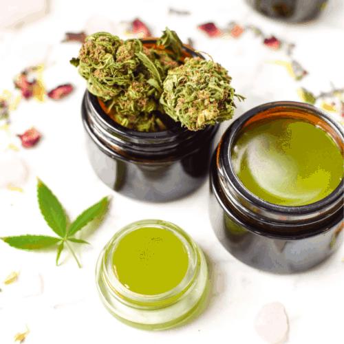 Cannabis Salve Featured Emily Kyle