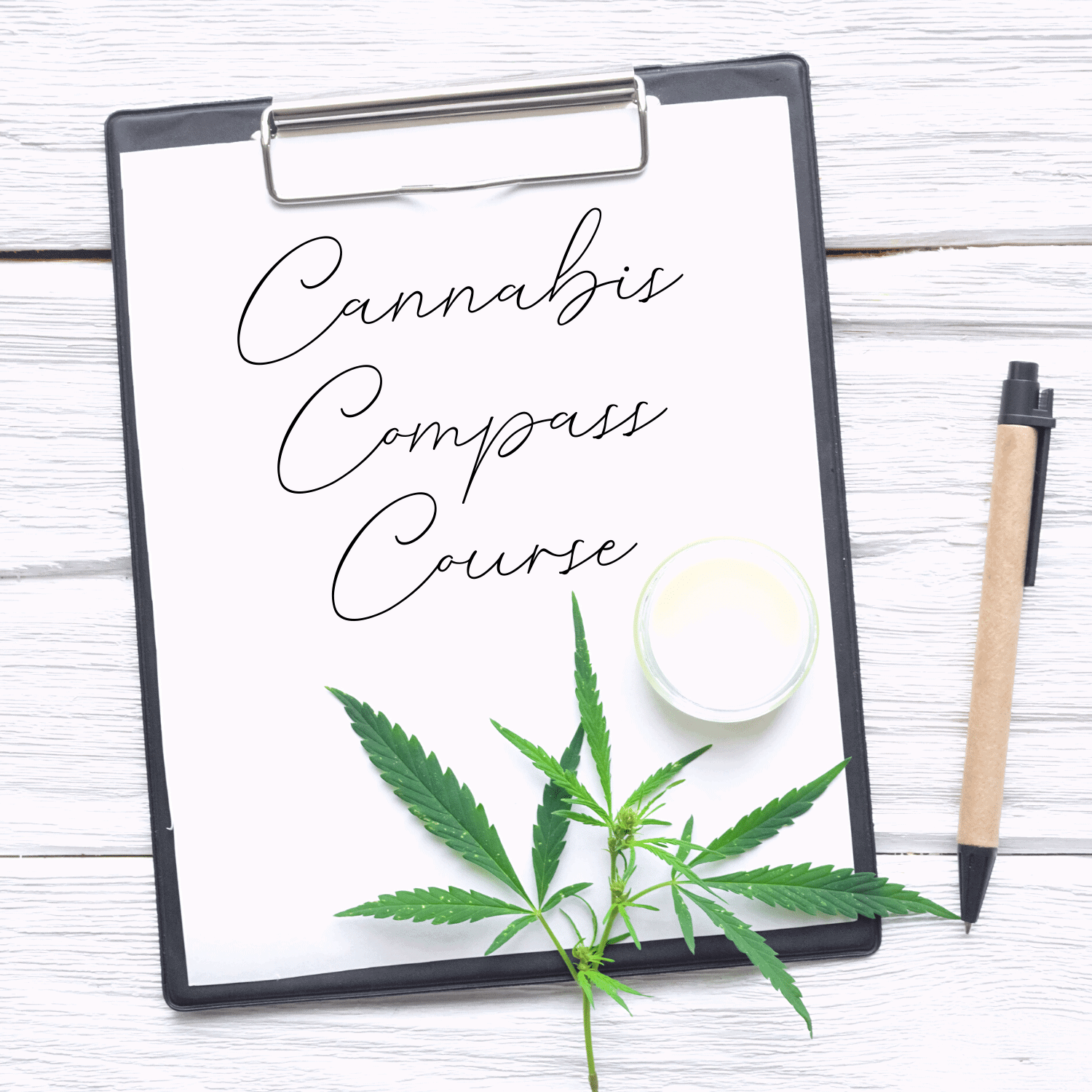 Emily Kyle Cannabis Compass Course