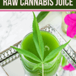 Raw Cannabis Juice