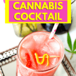 Strawberry Watermelon Cannabis Cocktail by Emily Kyle