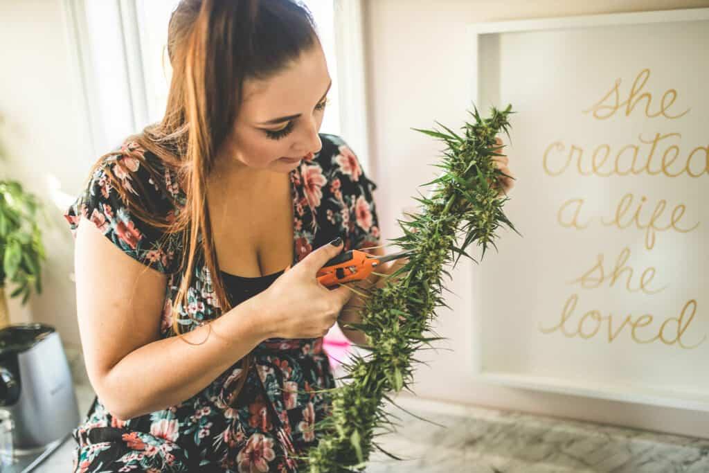 Emily Kyle Cannabis Plant