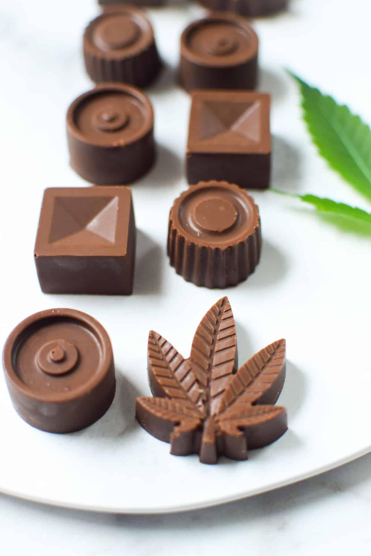 Finished image of molded cannabis infused chocolates