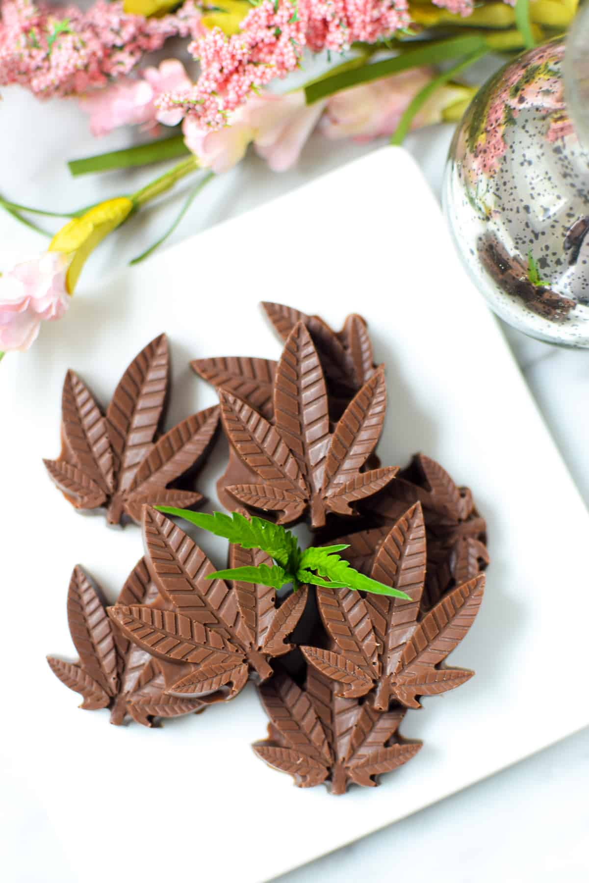 A completed batch of molded cannabis chocolates made in cannabis leaf shaped molds